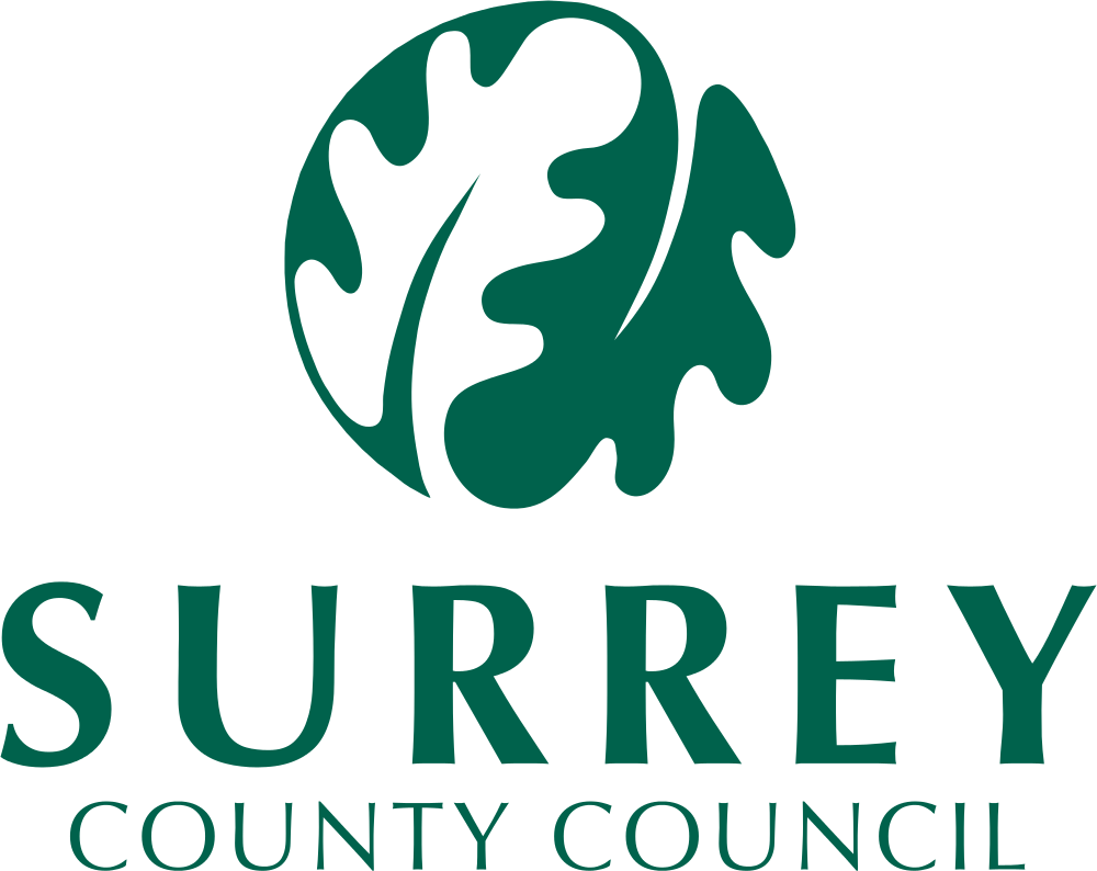 Surrey County Council | Web and App Development Surrey | Thunderbolt Digital